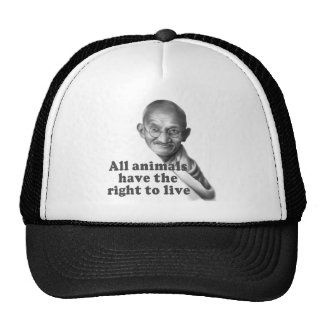 Animal Rights Trucker Hat