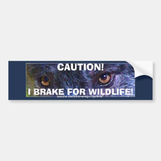 ANIMAL SAFETY Bumper Sticker Collection Car Bumper Sticker