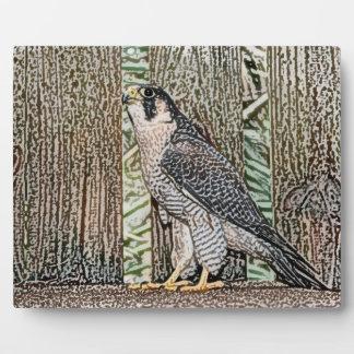 animal salvaje del diseño del pájaro del bosquejo placas de plastico