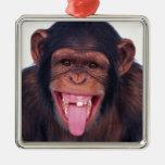 animal salvaje del mono del chimpancé fresco del ornamentos de reyes