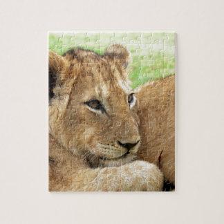 Animal salvaje joven del león del bebé puzzle