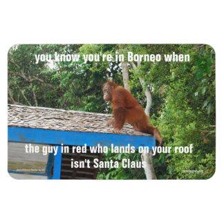 Animal Santa Claus  Borneo Christmas Jokes Premium Rectangle Magnet