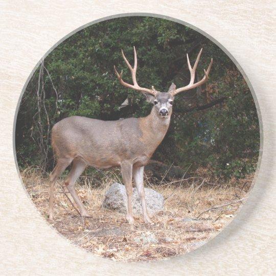 Animal Series---Deer Coaster