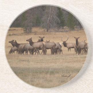Animal Series---Elk in the Wild Coaster