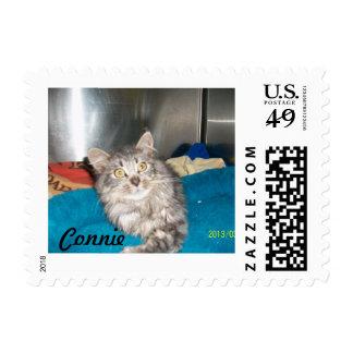 Animal Shelter Fundraiser Stamp