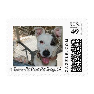 Animal Shelter Fundraiser Postage Stamps