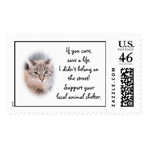 Animal Shelter Postage Stamp