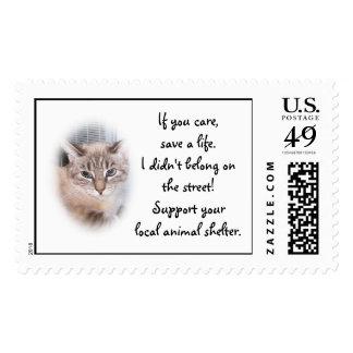 Animal Shelter Postage Stamps