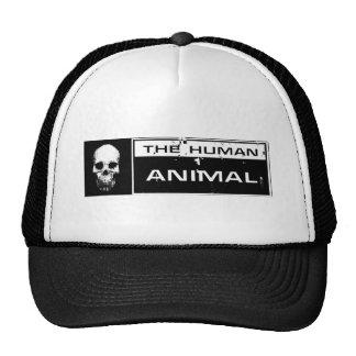 Animal Skull Hat