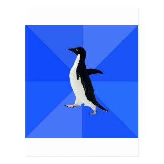 Animal social torpe Meme del consejo del pingüino Postales