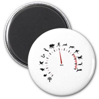 animal speedometer 2 inch round magnet