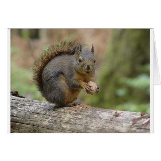 Animal squiral tarjetón