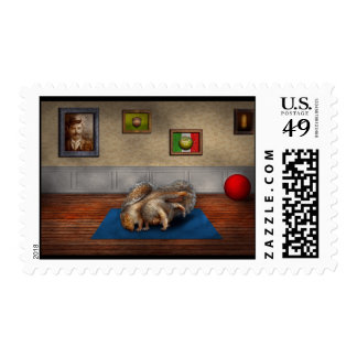 Animal - Squirrel - And stretch Two Three Four Postage