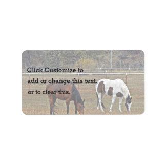 Animal Subject Address Label