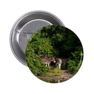 Animal Subject 2 Inch Round Button