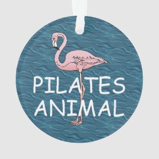 Animal SUPERIOR de Pilates
