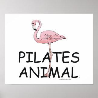 Animal SUPERIOR de Pilates Impresiones