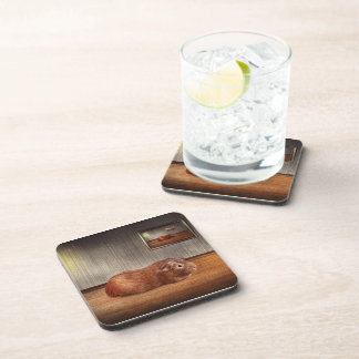 Animal - The guinea pig Drink Coasters