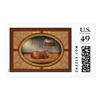 Animal - The guinea pig Stamp