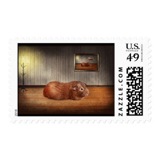 Animal - The guinea pig Postage
