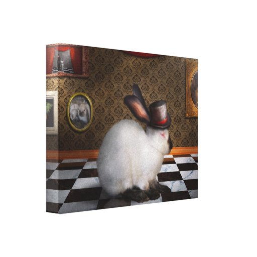 Animal - The Rabbit Gallery Wrapped Canvas
