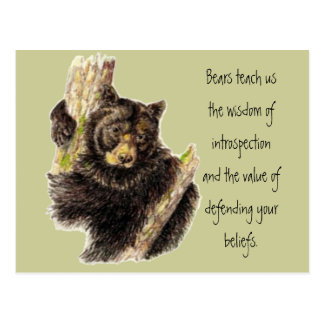 Animal Totem, Bears Nature, Spirit Guide Postcard