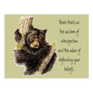 Animal Totem, Bears Nature, Spirit Guide Postcard