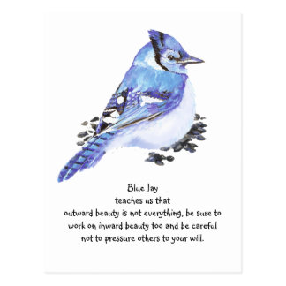 Animal Totem Blue Jay Inspirational Nature Guide Postcard