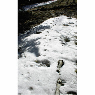 Animal Tracks In The Melting Snow Acrylic Cut Outs
