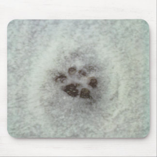 Animal tracks in the snow mouse pad