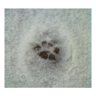 Animal tracks in the snow posters