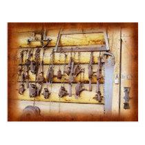 Animal Traps in Alaska Postcard