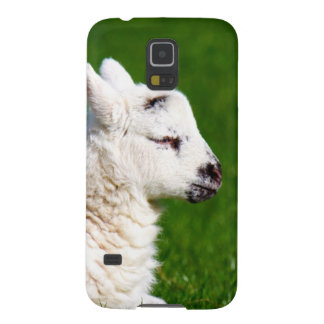 animal waiting for mom and move galaxy s5 case
