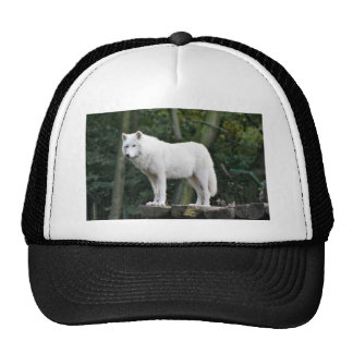 Animal Wolf Nature Peace Love Destiny Trucker Hat