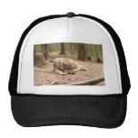 Animal Wolf Peace Love Wild Country Nature Trucker Hat