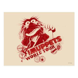 Animal World Tour Postcards