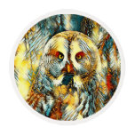 AnimalArt_Owl_20170602_by_JAMColors Edible Frosting Rounds