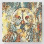 AnimalArt_Owl_20170602_by_JAMColors Stone Coaster
