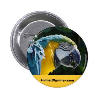 AnimalCharmer.com Pinback Button