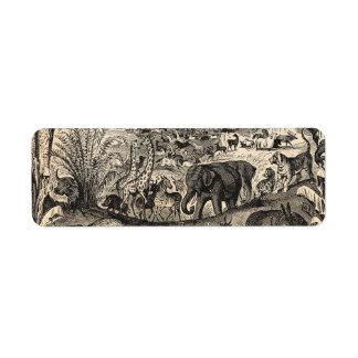 Animales animales africanos del ejemplo de los 180 etiqueta de remite