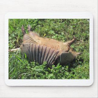 Animales atropellados del armadillo - Dasypodidae Alfombrillas De Ratones