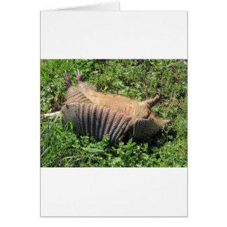 Animales atropellados del armadillo - Dasypodidae Tarjeta De Felicitación