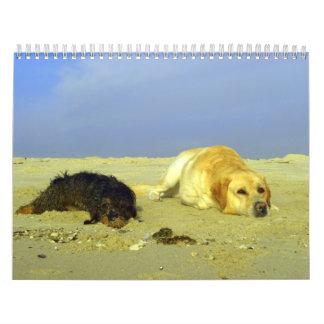 Animales - calendario 2008