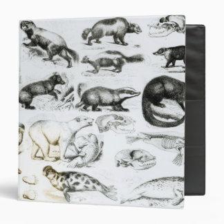 "Animales carnívoros carpeta 1 1/2"""
