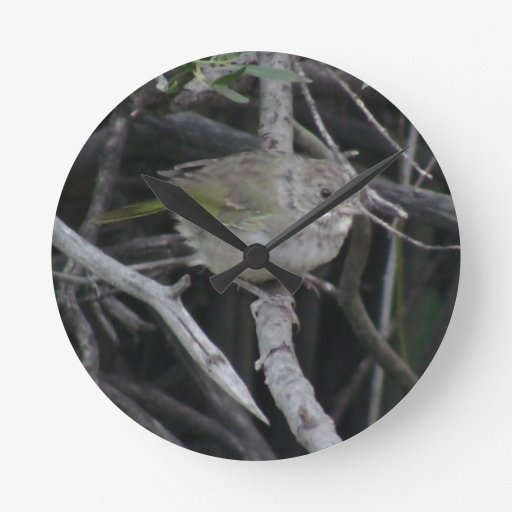 Animales de Aves de los pájaros de la fauna de Slo Reloj De Pared
