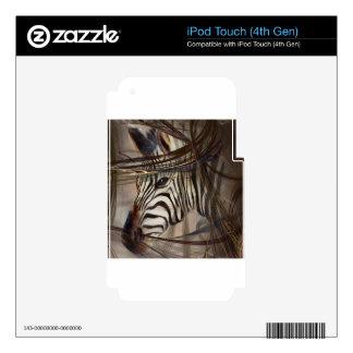 Animales de la cebra, fauna, arte de la fauna, iPod touch 4G skin