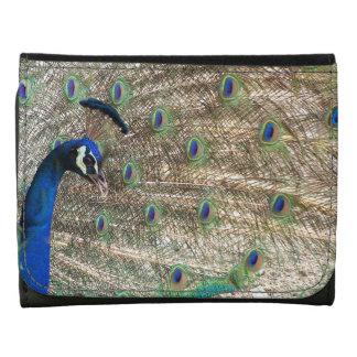 Animales de la fauna de las plumas de pájaro del