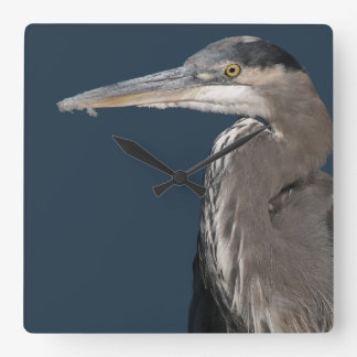 Animales de la fauna de los pájaros de la garza reloj cuadrado