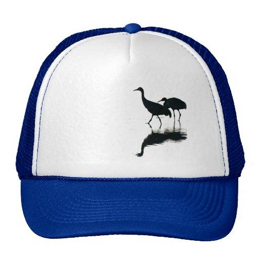 Animales de la fauna de los pájaros de la grúa de gorro