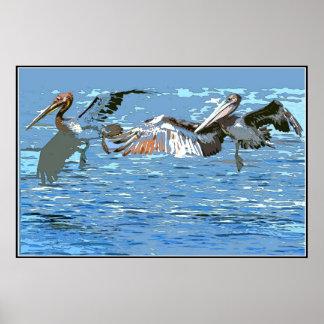Animales de la fauna de los pájaros del pelícano póster